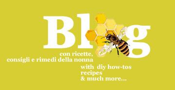 blog: diy how-to, online videogames, recipes, honey - ricette, apicoltura fai da te, videogiochi sul miele